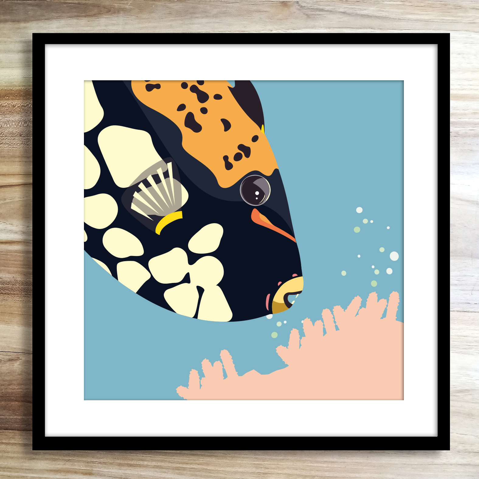 Clowntriggerfishzoopenmathieusechet