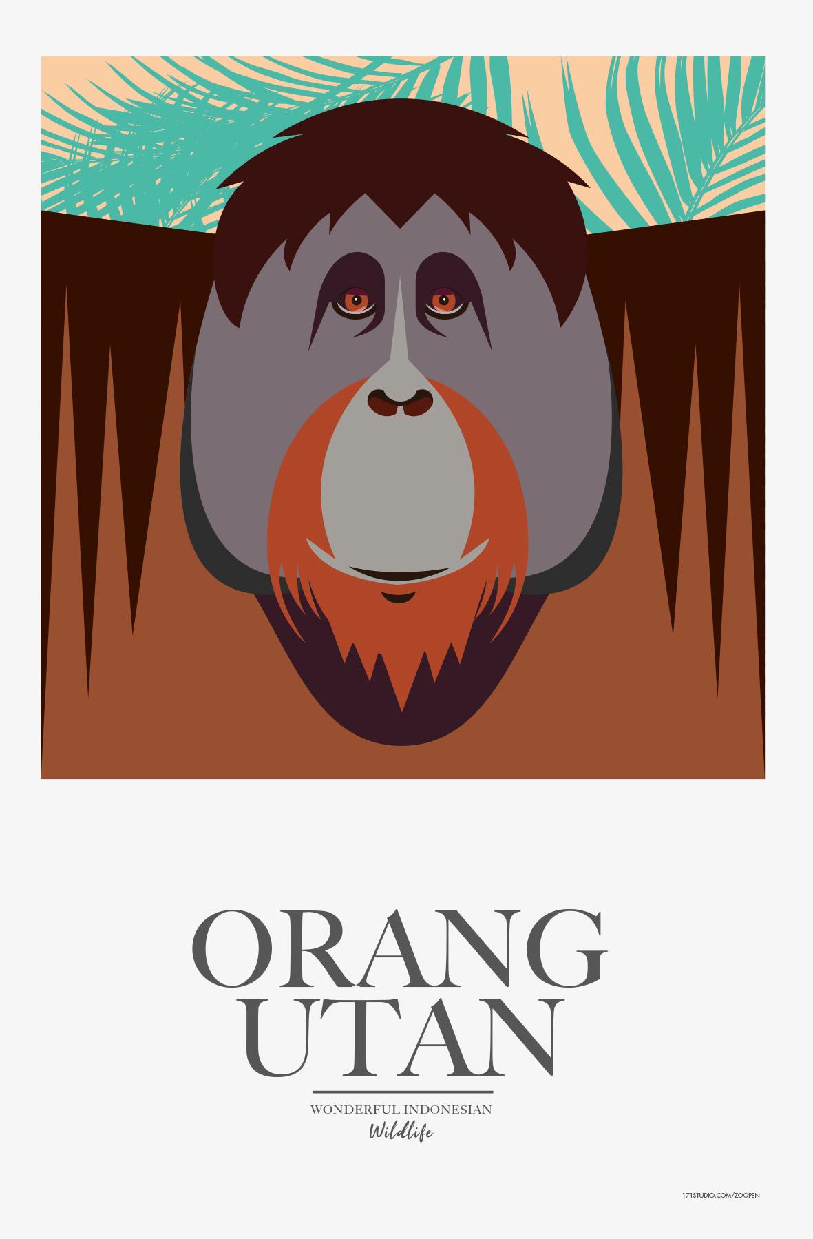 OrangUtan171studiomathieusechet