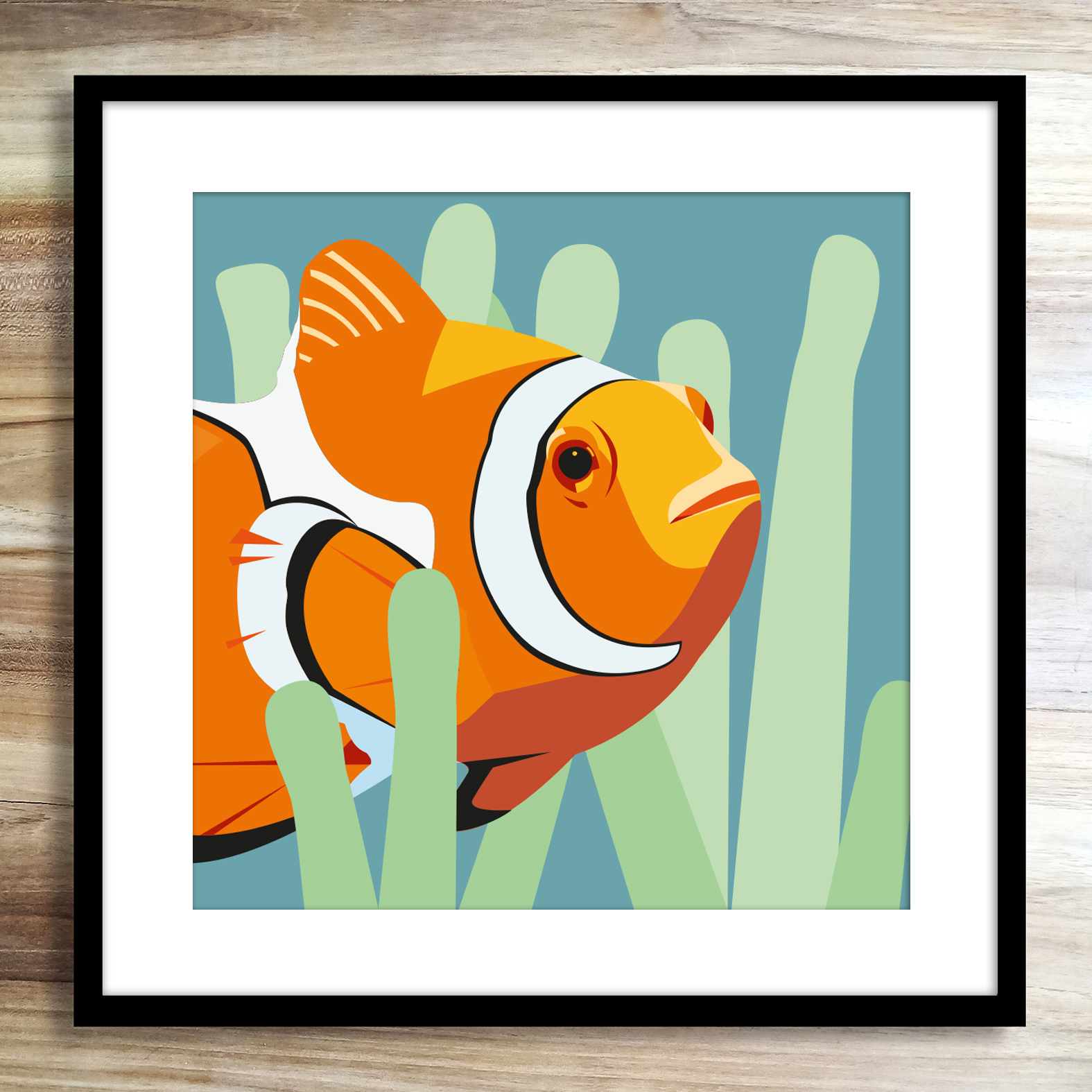 Clownfishzoopenmathieusechet