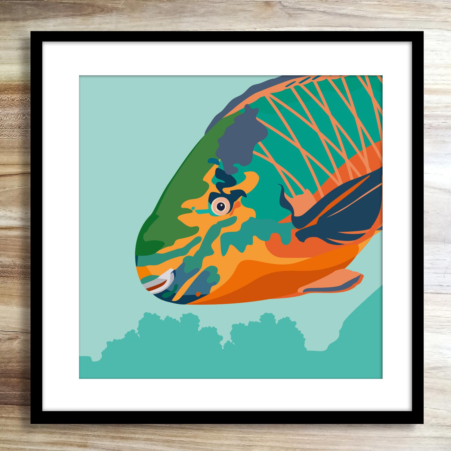 Parrotfishzoopenmathieusechet