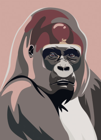 Gorille Zoopen Mathieu Sechet