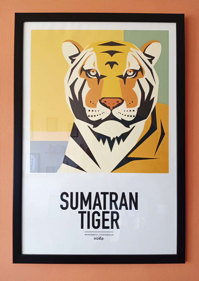 tiger171studiomathieusechet