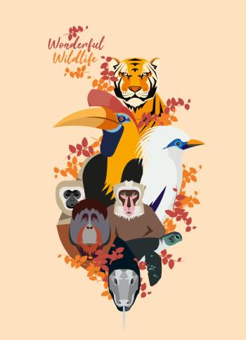 wildlifefull
